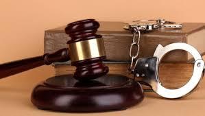 Luật sư tham gia bào chữa.